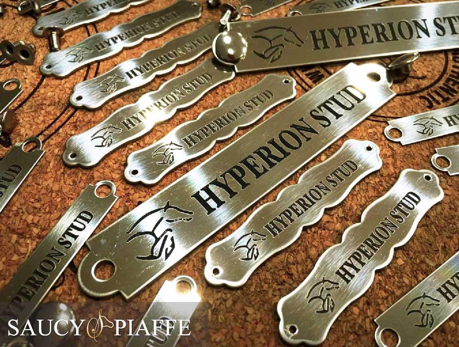 saucypiaffe-custom-silver-saddle-plates